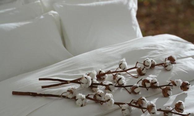 5 Essential Mattress Certifications For Non-Toxic & Natural Mattresses