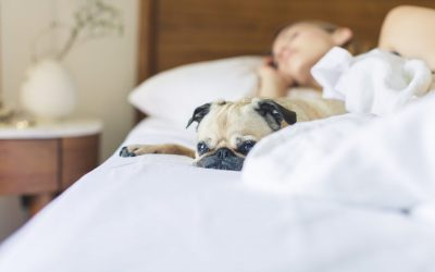 How To Get Sleepy