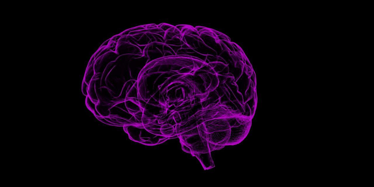 The #1 Tip To Avoid Alzheimer's Disease