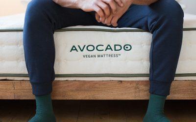 Avocado Vegan Mattress Review