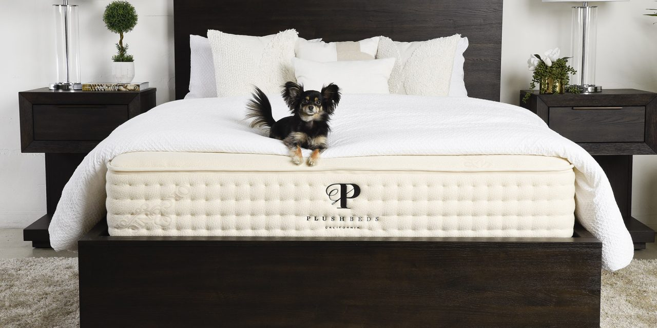 Plushbeds Botanical Bliss Natural Latex Mattress Review