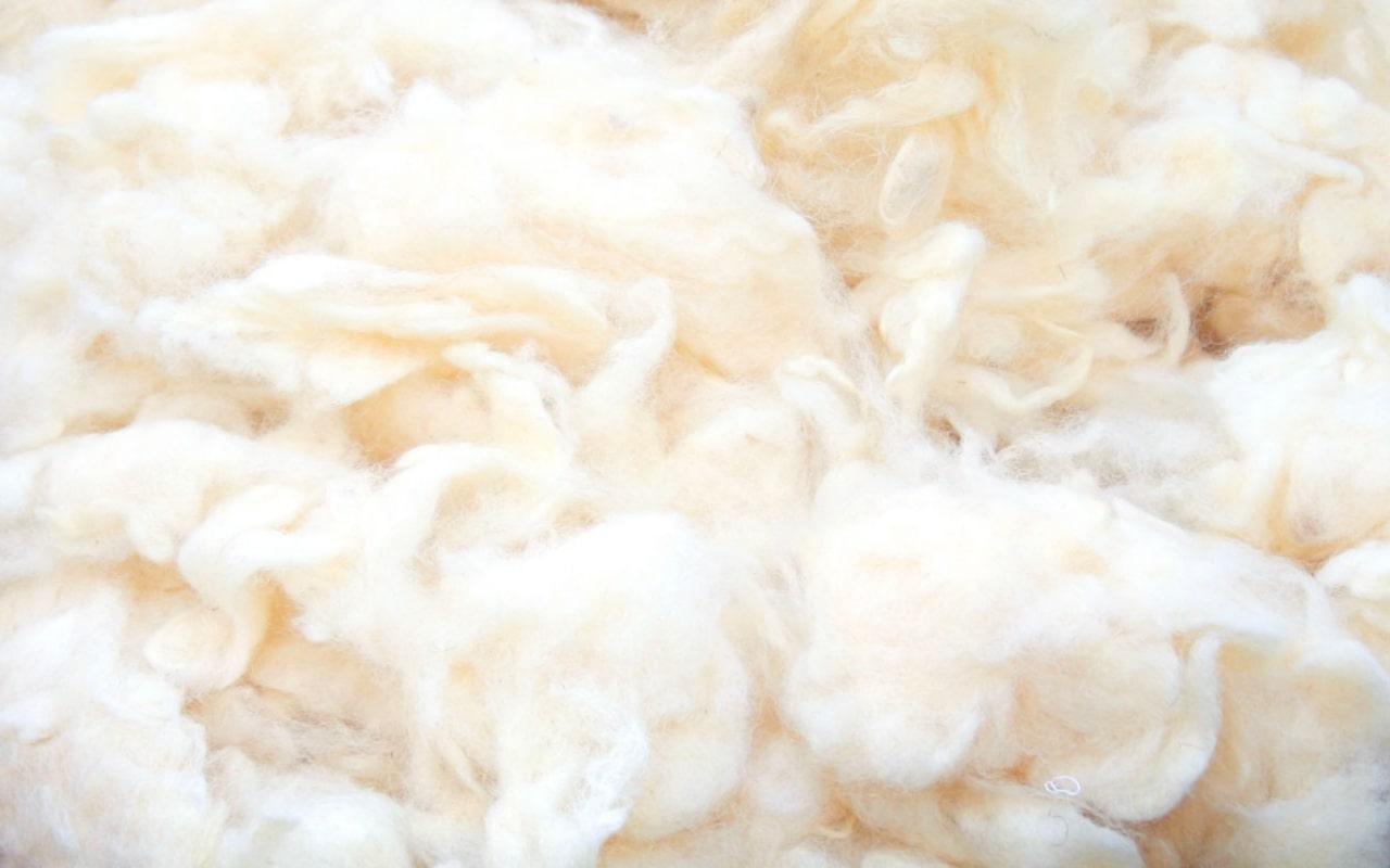 New Zealand Joma Wool